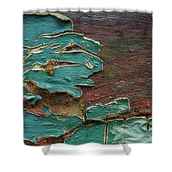 Shower Curtain featuring the photograph Peeling by Mike Eingle
