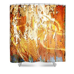 Peeling Wall Portrait Shower Curtain by Andrea Barbieri
