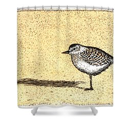 Peep Shower Curtain by Charles Harden