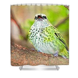 Shower Curtain featuring the photograph Peep by Judy Kay