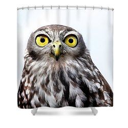 Peepers Shower Curtain