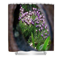 Peephole Garden Shower Curtain by CML Brown