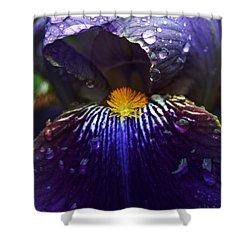 Peer Shower Curtain