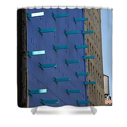 Peg Board Shower Curtain by Rob Hans