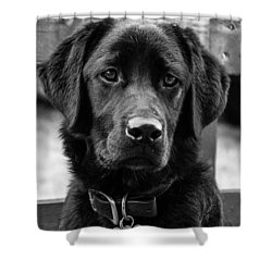 Peggy Shower Curtain by Martina Fagan