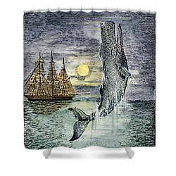 Pehe Nu-e: Moby Dick Shower Curtain by Granger