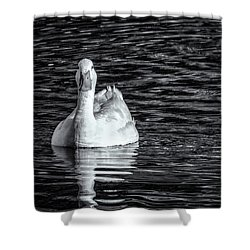Pekin Duck Monochrome Shower Curtain