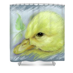 Pekin Duckling Portrait Shower Curtain