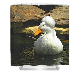 Shower Curtain featuring the photograph Pekin Pop Top Duck by Sandi OReilly