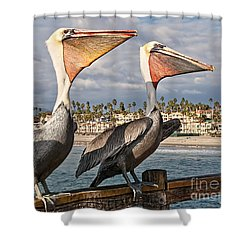 Pelican - A Happy Landing Shower Curtain