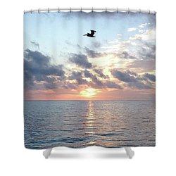 Pelican Dawn Shower Curtain