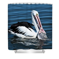 Pelican Fishing 6661 Shower Curtain