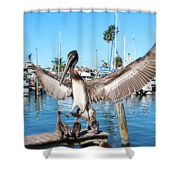 Pelican Flying In Shower Curtain