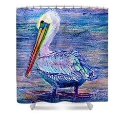 Pelican Gaze Shower Curtain