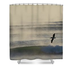 Pelican In Sea Smoke Shower Curtain