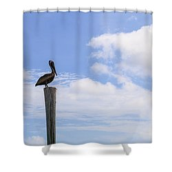 Pelican In The Clouds Shower Curtain by Christopher L Thomley