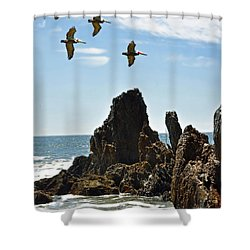 Pelican Inspiration Shower Curtain