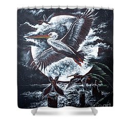 Pelican Moon Shower Curtain