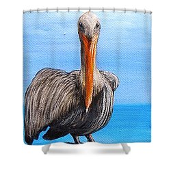 Pelican On Pier Shower Curtain