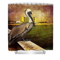 Pelican On The Pier Shower Curtain