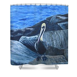 Pelican On The Rocks Shower Curtain