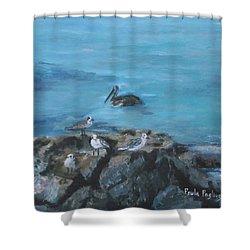 Pelican Patrol Shower Curtain