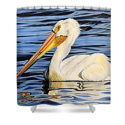 Pelican Posing Shower Curtain