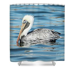 Pelican Relaxing Shower Curtain