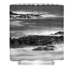 Pelican Rock Shower Curtain by Hugh Smith