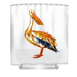 Pelican Watercolor Painting Shower Curtain by Marian Voicu