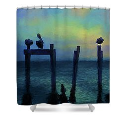 Shower Curtain featuring the photograph Pelicans At Sunset by Jan Amiss Photography
