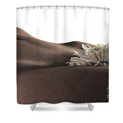Pelvis Petals Shower Curtain by Robert WK Clark