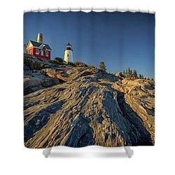 Pemaquid Point Shower Curtain by Rick Berk