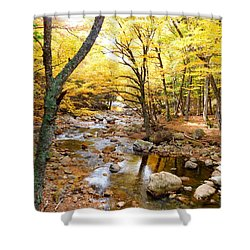 Pemigwasett River At The Flume Shower Curtain
