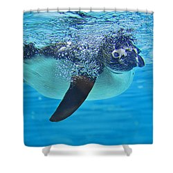 Penguin Dive Shower Curtain