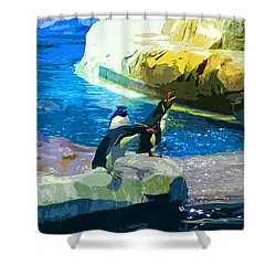 Penguins At The Zoo Shower Curtain