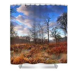 Penllergaer 1 Shower Curtain