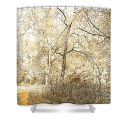 Pennsylvania Autumn Woods Shower Curtain by A Gurmankin