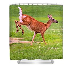 Pennsylvania White-tail Shower Curtain