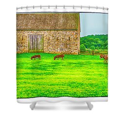 Pennsylvania's Oldest Barn Shower Curtain by R Thomas Berner