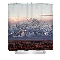 Pensive Shower Curtain