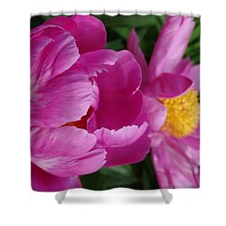 Shower Curtain featuring the photograph Peonies In Pink by Rebecca Overton