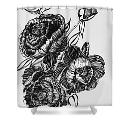 Peonies Line Drawing Shower Curtain