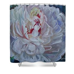 Peony 11 Jenny Lee Discount Shower Curtain