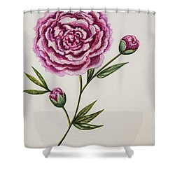 Peony Botanical Shower Curtain by Elizabeth Robinette Tyndall