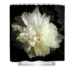 Shower Curtain featuring the photograph Peony by Cynthia Lassiter