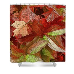 Shower Curtain featuring the photograph Peony Farewell by Betsy Zimmerli