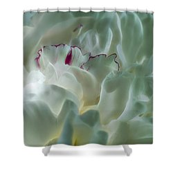 Peony Flower Energy Shower Curtain