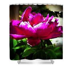 Shower Curtain featuring the photograph Peony by Joseph Frank Baraba