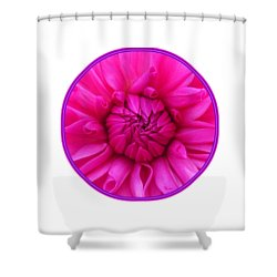 Peony Rose Shower Curtain